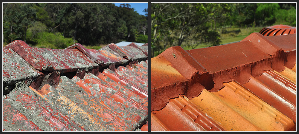 Roof Restoration Roof Repair Gutters Amp Colorbond